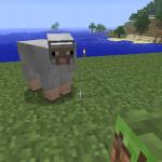明るい灰色の羊