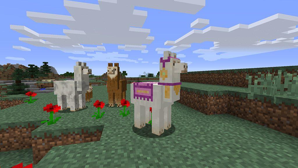 mc111-llamas